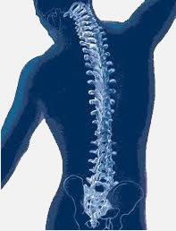 Diagnosis for Endoscopic Spine Surgery