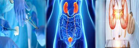 Urology surgeons in Mumbai